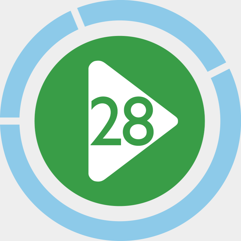 VPM28 Logo